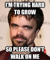 Meme Moustache - midget memes funny midget pictures