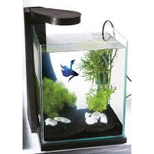 idee deco aquarium nano aquarium поиск в google нано аквариум pinterest aquariums
