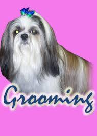 Creature Comforts Grooming Smoky Mountin Dog Grooming Creature Comfort