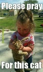 Niece Meme - my niece animal lover meme by wild flower memedroid