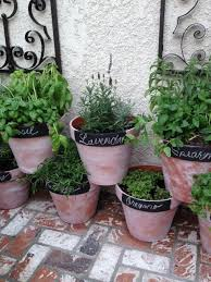 Potted Garden Ideas Potted Herb Garden Best 25 Potted Herb Gardens Ideas On Pinterest
