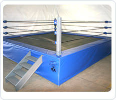 backyard wrestling ring for sale cheap troline wrestling ring fitness equipment for my future gym