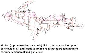 Map Of Upper Michigan by Beacon Researchers At Work Understanding Spatial Genetic