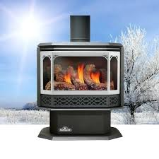 Propane Fireplace Heaters by Direct Vent Propane Fireplace Freestanding Empire Heritage Cast