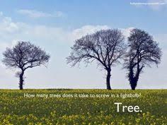 Tree Puns Tree Puns Search School