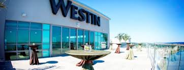 Miami Wedding Venues Top 5 Rooftop Wedding Venues In Florida The Celebration Society