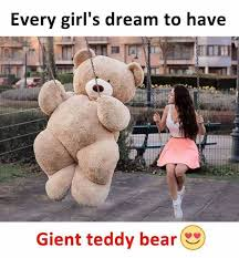 Teddy Bear Meme - dopl3r com memes every girls dream to have gent teddy bear