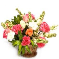 warm wishes buy flowers online buy cake online send flowers