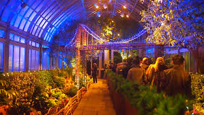 Botanical Garden In Bronx by That Working Life What To Do This Weekend Holiday Train Show At