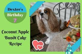 homemade healthy birthday cake recipe dogs dexter dog u0027s