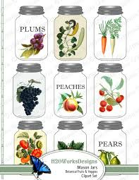 mason jars fruits vegetables clipart botanical vintage food