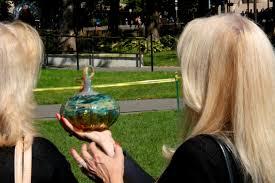 the great glass pumpkin patch