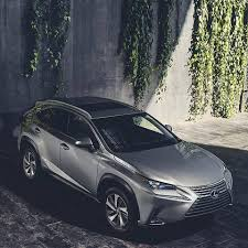 lexus singapore harrier owners u0027 club home facebook