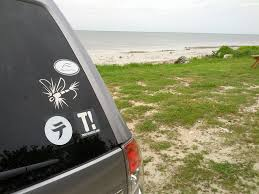 salt life decal i u0027ve had enough of the