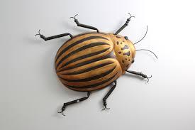 beetle bug wall art forwood design