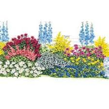 Flower Bed Plan - 28 best three season flower garden images on pinterest flower