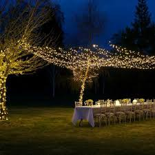 sparkling lights for weddings businesses and events