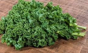 comment cuisiner le chou kale apprenez à faire pousser du chou kale et du chou cavalier de façon