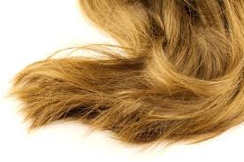 cut before dye hair cut down on chemicals try a natural dye yba