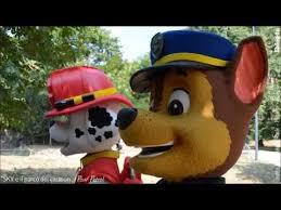 paw patrol sky il parco dei cartoon