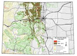 Keystone Colorado Map by Aerial Survey Shows Pine Beetles Waning But Spruce Beetles