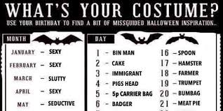 halloween hamster costume halloween costumes what should you go as this chart will