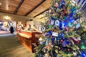 Christmas Tree Farm Va - christmas visit abingdon virginia