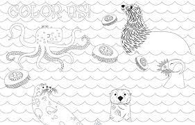 seattle aquarium seattleaquarium twitter