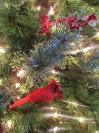 i need mom the christmas tree 2012