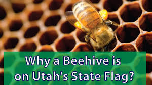 Facts About Georgia State Flag Why A Beehive Is On Utah U0027s State Flag Youtube