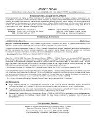 Computer Programmer Resume Example by Informatica Experience Resume With Business Intelligence Resume