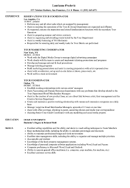 Top 8 Medical Billing Coordinator Resume Samples by Tour Coordinator Resume Samples Velvet Jobs