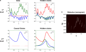 frontiers perception and hierarchical dynamics frontiers in