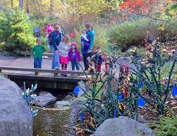 Botanical Garden Bellevue Bellevue Botanical Garden Preparing For Garden D Lights Bellevue