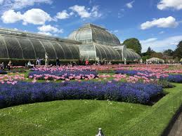 viac ako 25 najlepších nápadov na pintereste na tému kew gardens