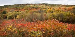 everyday magic wisconsin fall colors devil u0027s lake park