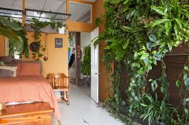 meet a woman who keeps 500 plants in her brooklyn apartment a living wall of plants in oakes bedroom was designed with a sub irrigation system hooked up to her sink the plants are fed from underneath