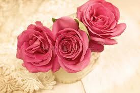 imagenes de rosas vintage rosas vintage imagen de archivo imagen de fresco regalo 42118773