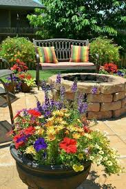 Potted Plant Ideas For Patio by Big Potted Plants Are Cute Bonsai Pinterest Plants Gardens