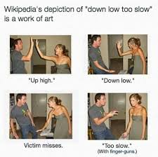 Meme Wikipedia - good work wikipedia hilarious memes and random