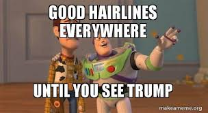 Buzz And Woody Memes - good hairlines everywhere until you see trump buzz and woody