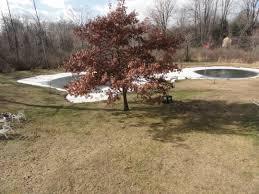 how to make a backyard skating rink the sunshine thiry blog