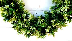 decor boxwood branches artificial boxwood wreath dried boxwood