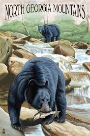 Tennessee travel posters images North georgia mountains black bears fishing lantern press