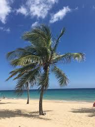 location san juan puerto rico guest house coqui del mar