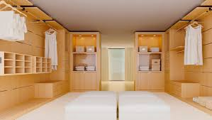 modern walk in closets excellent excerpt awesome closets with