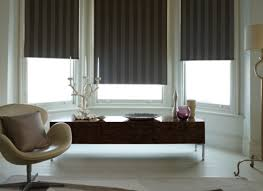 bay windows house blinds