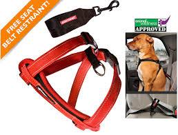 Comfortable Dog Collars Ezydog Padded Dog Chest Harnesses Dog Bike Harness Comfortable
