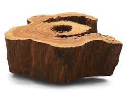 coffee tables breathtaking shop canoa salvaged tree trunk coffee