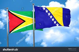 Guyana Flag Guyana Flag Bosnia Herzegovina Flag 3d Stock Illustration